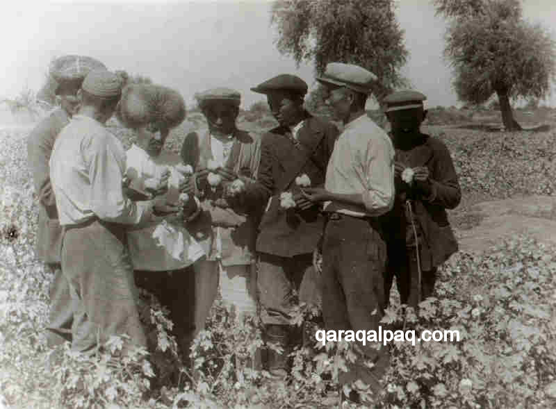 Inspecting the Qaraqalpaq cotton crop